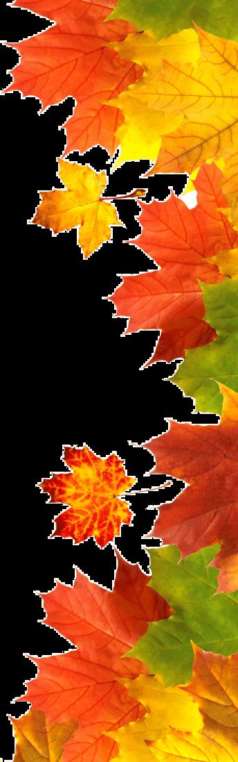 осінь справа