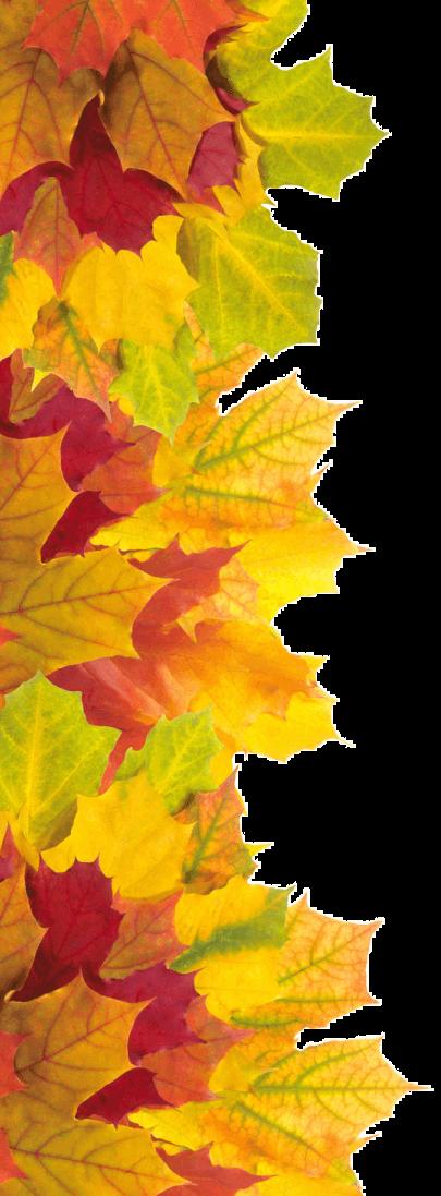 осінь зліва